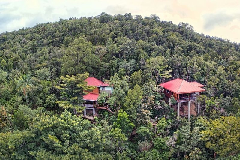 hideaways at tibay heights cottages in the jungle cabin in the rainforest dominica salt dive.jpg