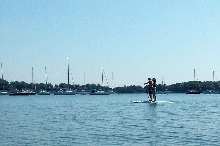 paddleboard750jays.jpg