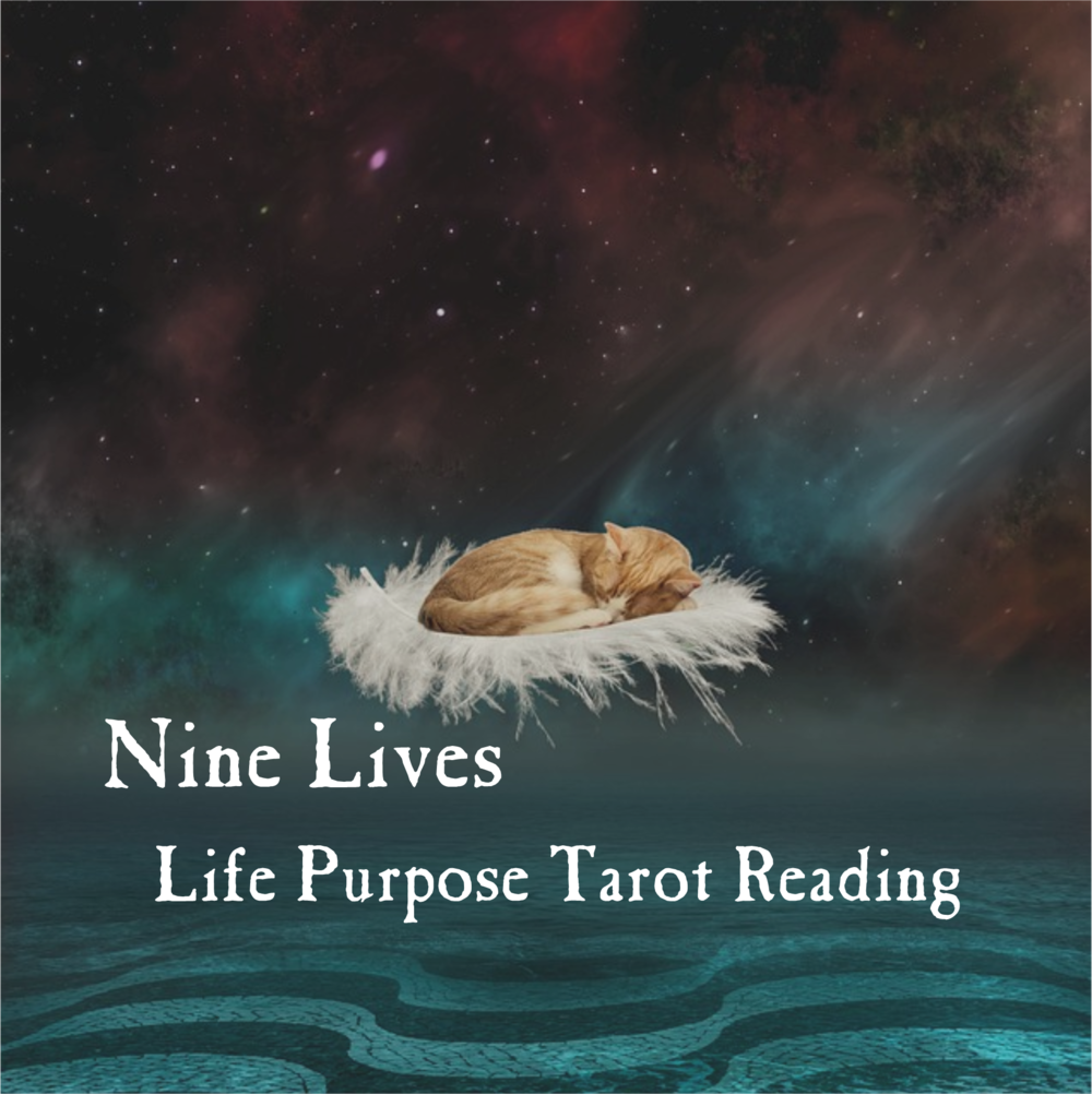 nine lives life purpose reading.png