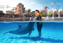 db3ebb4b-8f50-4d60-a271-f24435b4778f-2405-dubai-dolphin-photo-fun-01.jpg