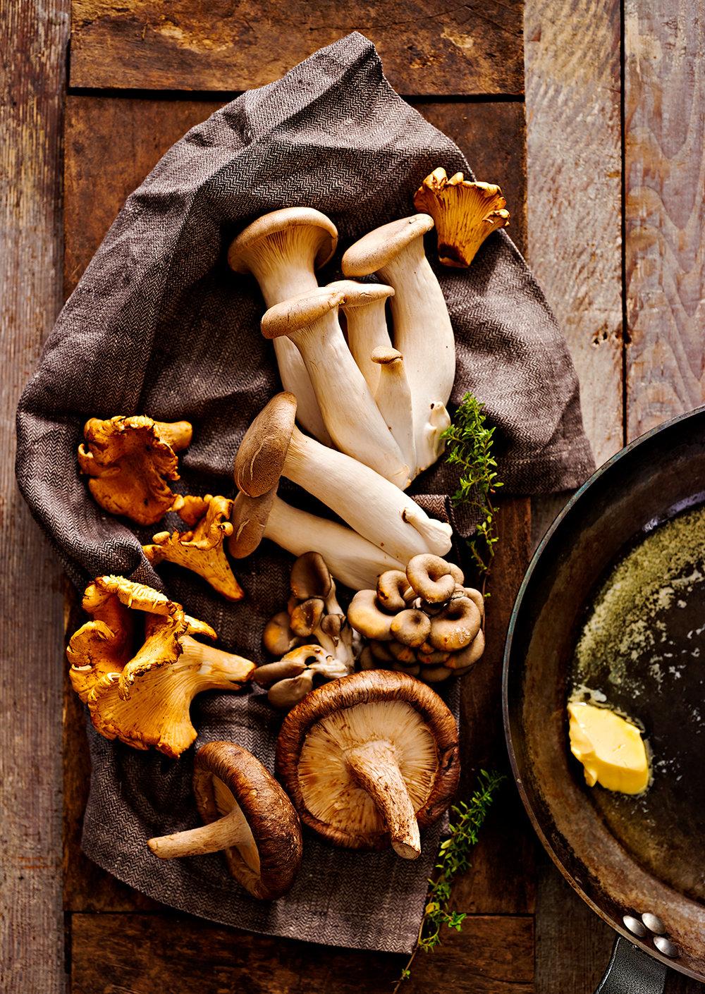 05_mushrooms.jpg