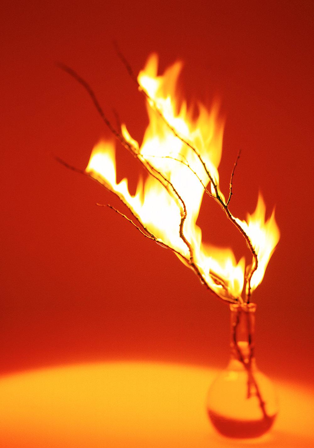 Fire_Portfolio_original.jpg