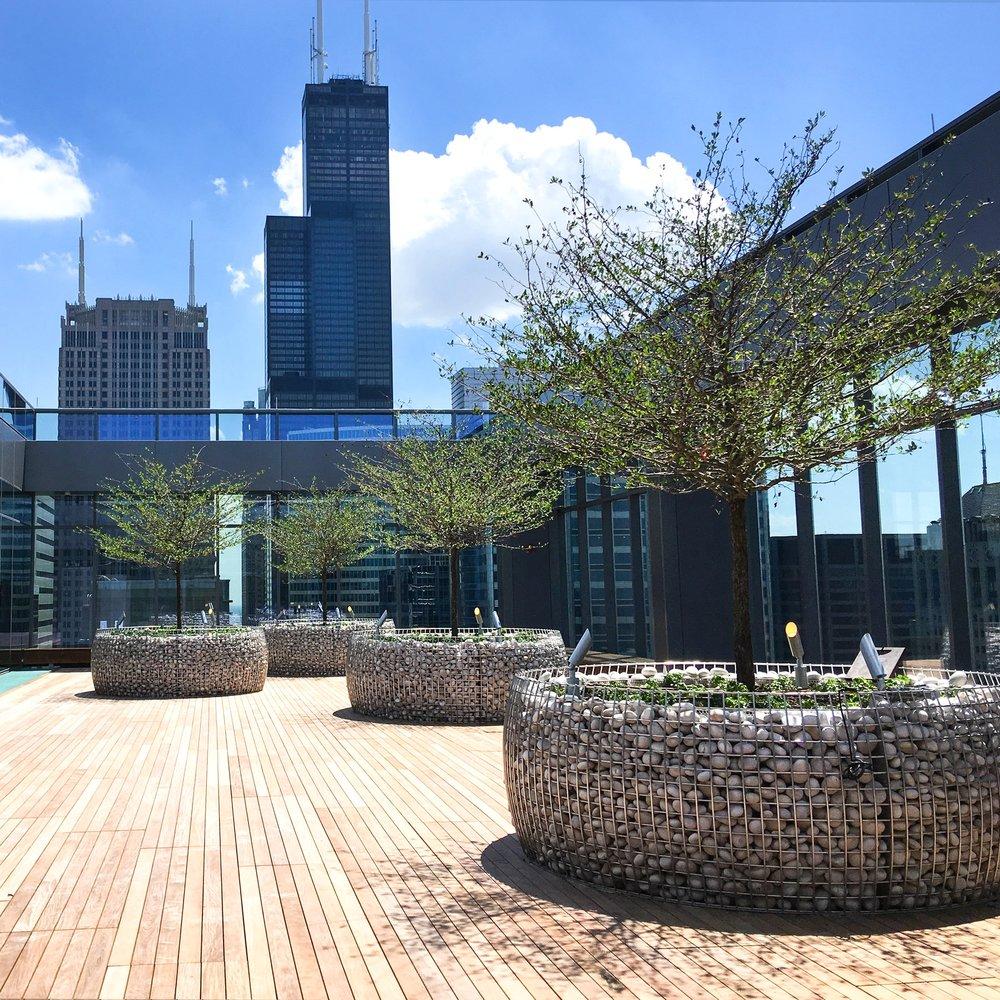 151 N. FRANKLIN  Landscape Construction  Chicago, Illinois