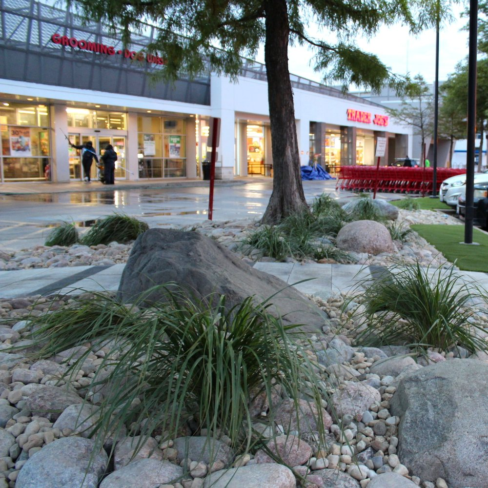 TRADER JOES LAKEVIEW  Landscape Design + Build  Chicago, Illinois