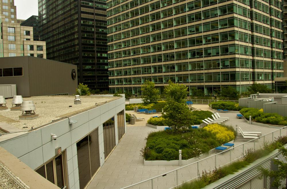 1-CWL_Pres_Towers-rooftop_6-24-2014 (97).jpg