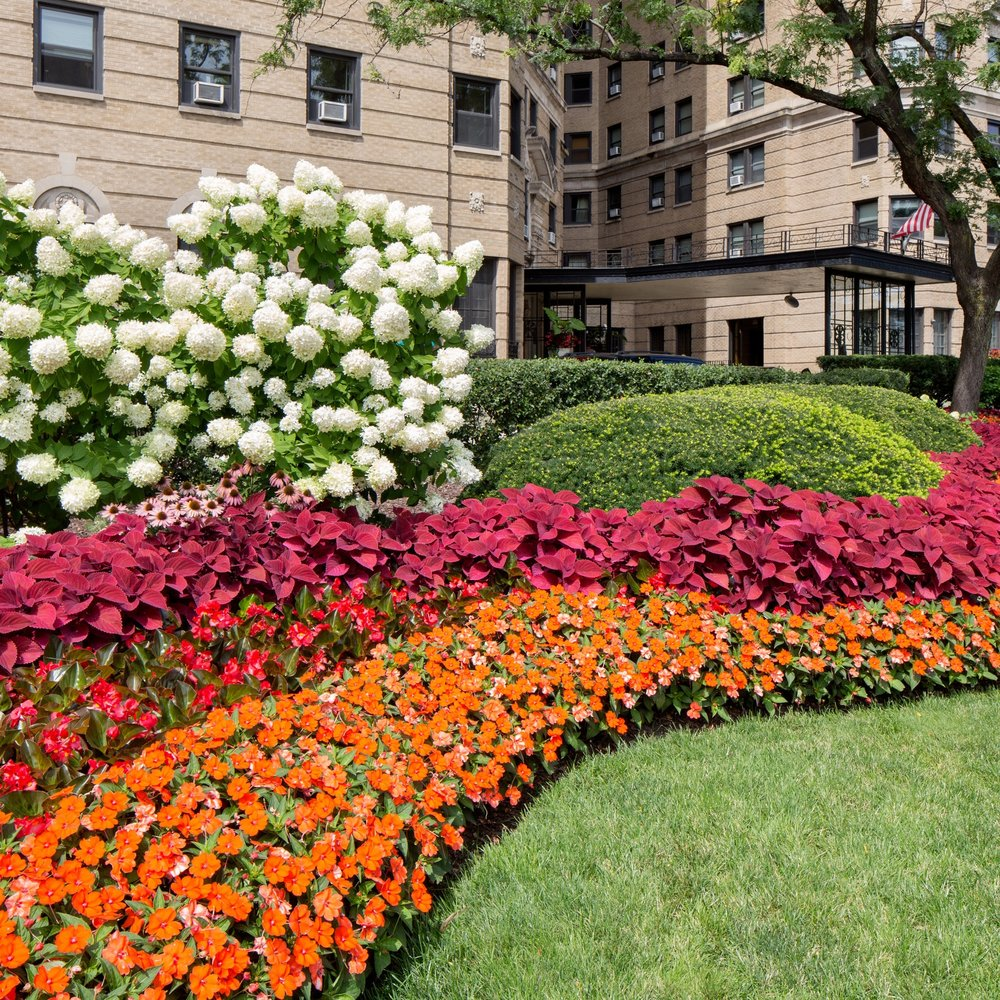 GOLD COAST CONDOMINIUMS  Landscape Enhancements + Maintenance  Chicago, Illinois