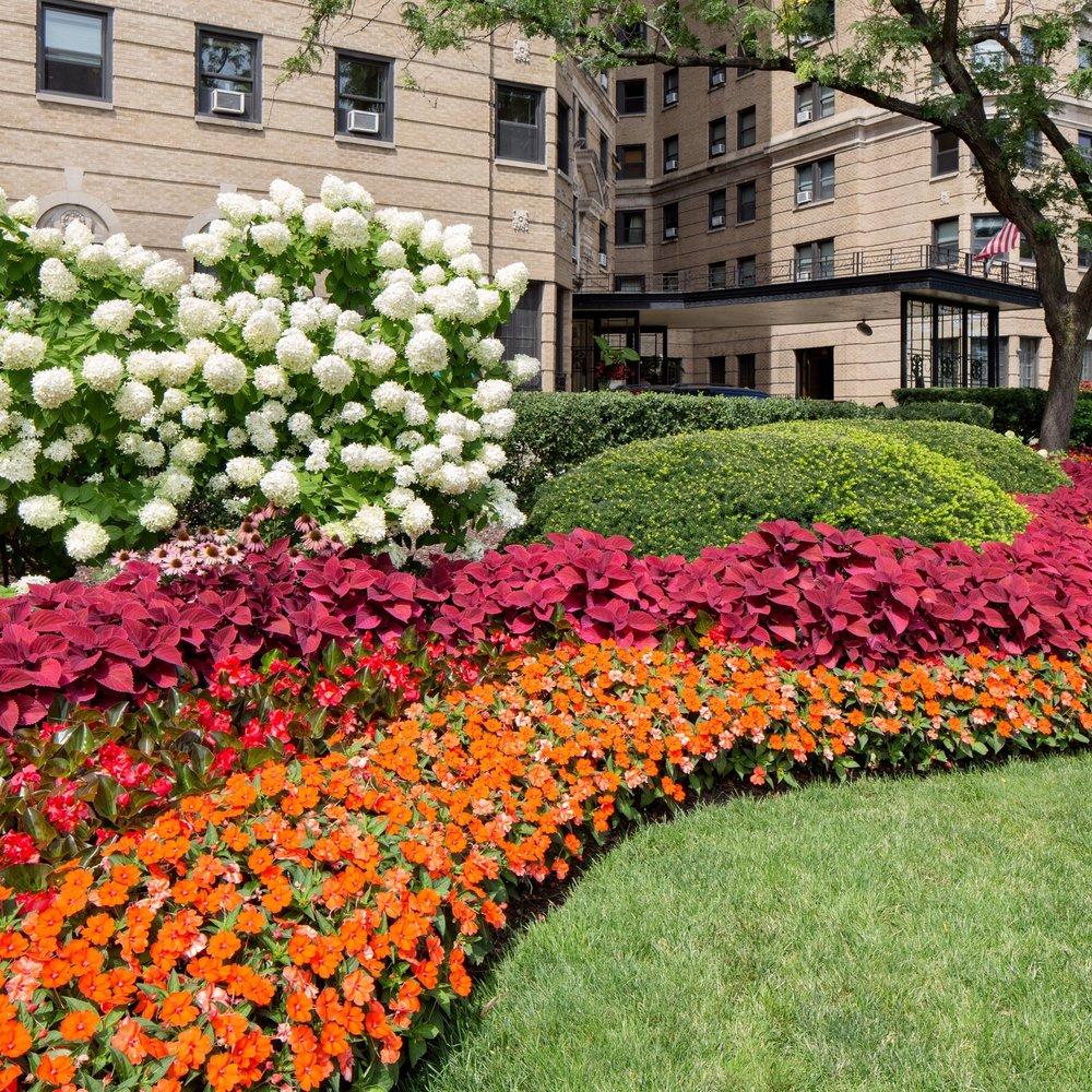 GOLD COAST CONDOMINIUMS  Landscape Enhancements + Maintenance  Chicago, Illinois