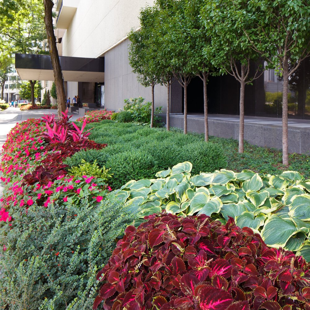 GOLD COAST HOA  Landscape Enhancements + Maintenance  Chicago, Illinois