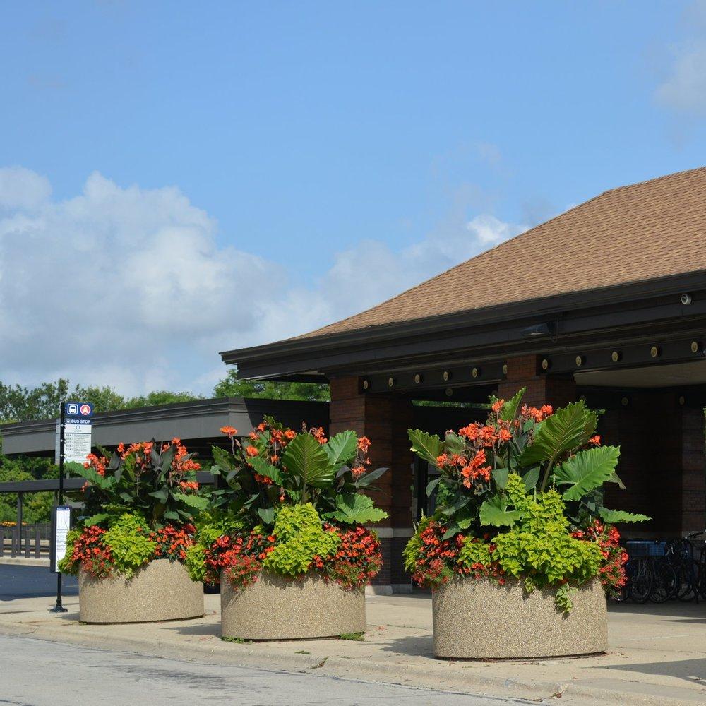 VILLAGE OF NAPERVILLE  Landscape Enhancements + Maintenance  Naperville, Illinois