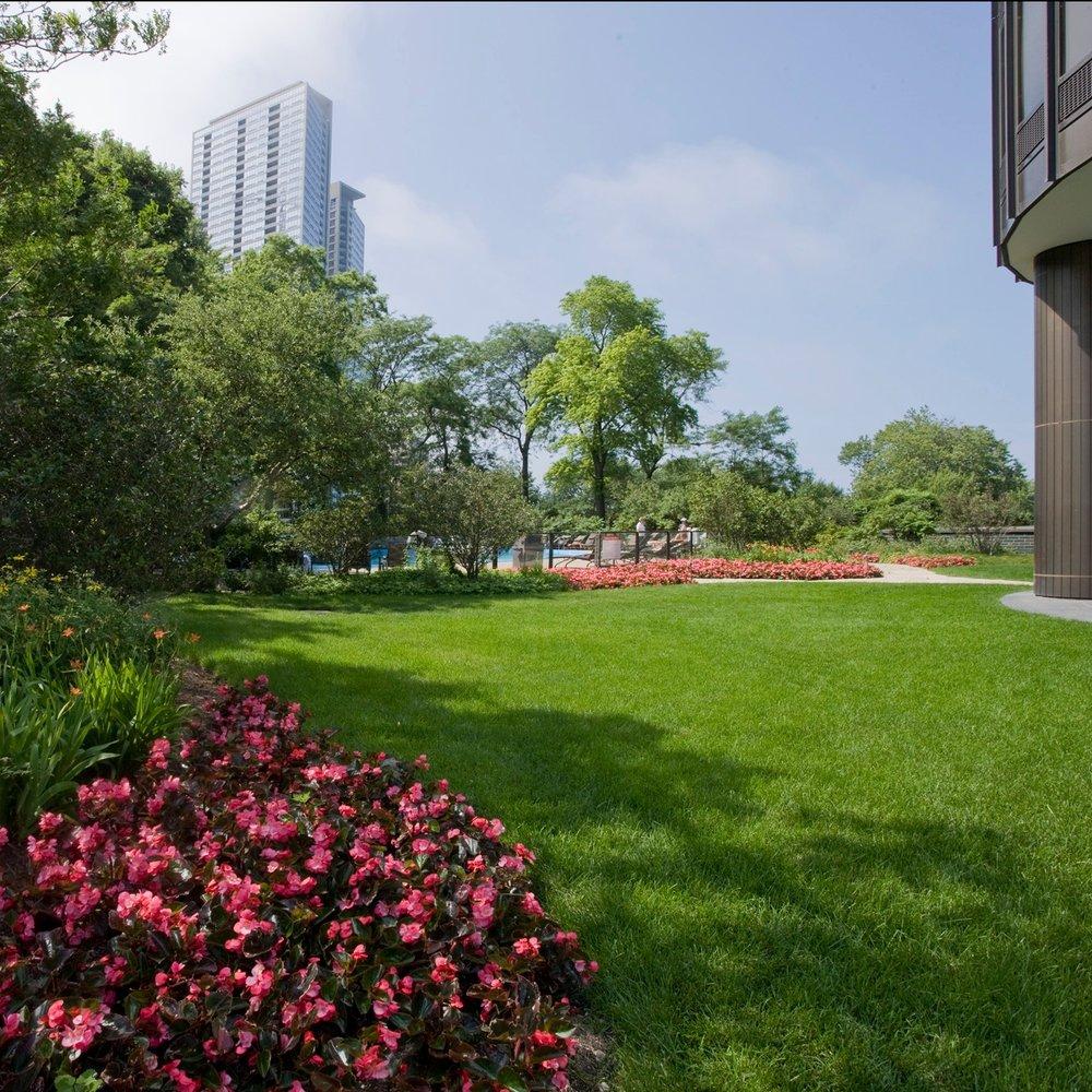 LAKE POINT TOWER  Landscape Maintenance  Chicago, Illinois