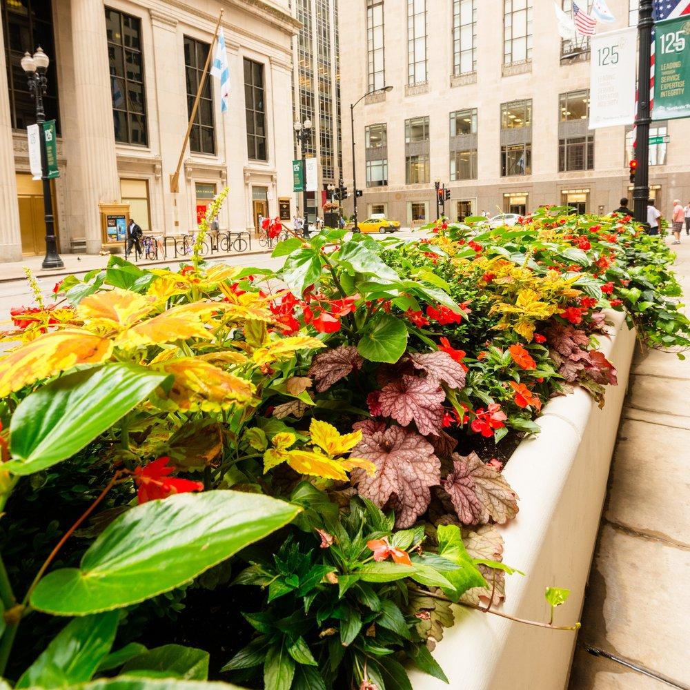FEDERAL RESERVE   Landscape Enhancements + Maintenance  Chicago, Illinois
