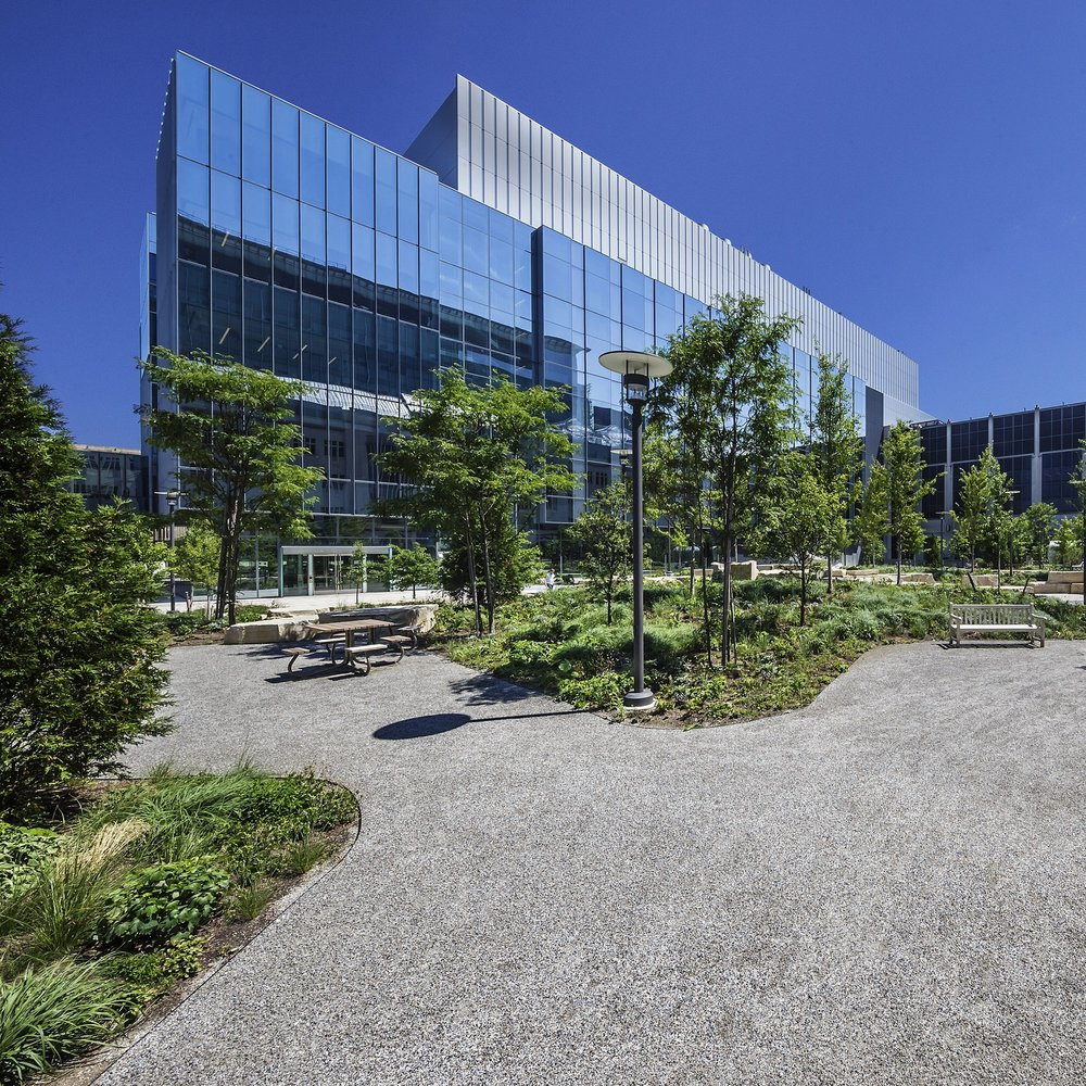 UNIVERSITY OF CHICAGO SCIENCE QUAD  Landscape Construction + Maintenance  Chicago, Illinois
