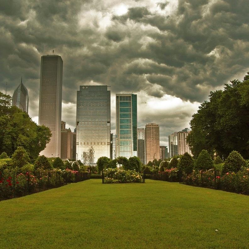 GRANT PARK ROSE GARDEN  Landscape Maintenance  Chicago, Illinois