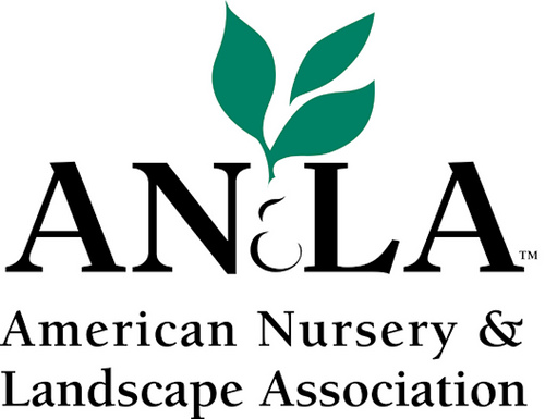American Nursery.jpg