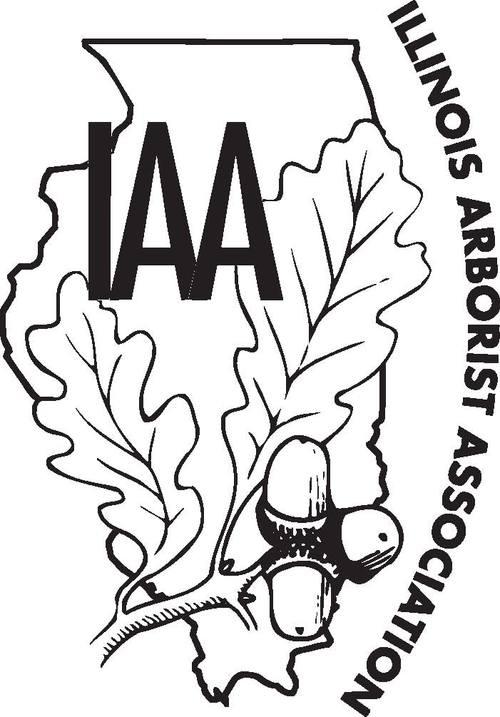 iAA_Logo_pdf.jpg