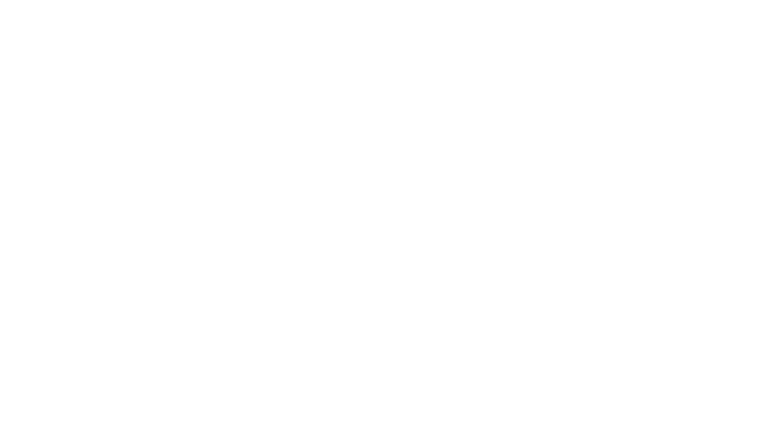 Strong Island Electric