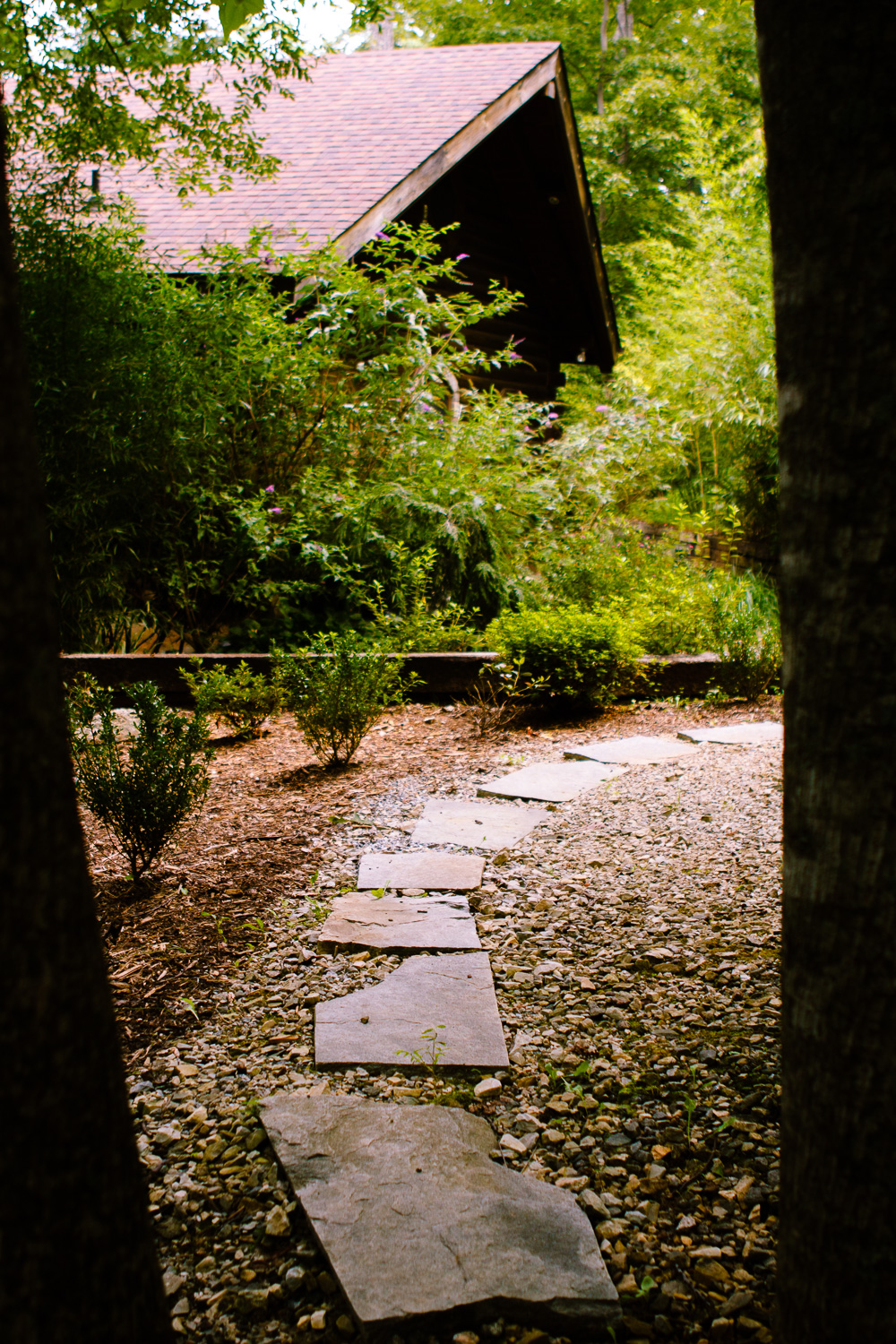 Stone path at Tao Mountain Sanctuary