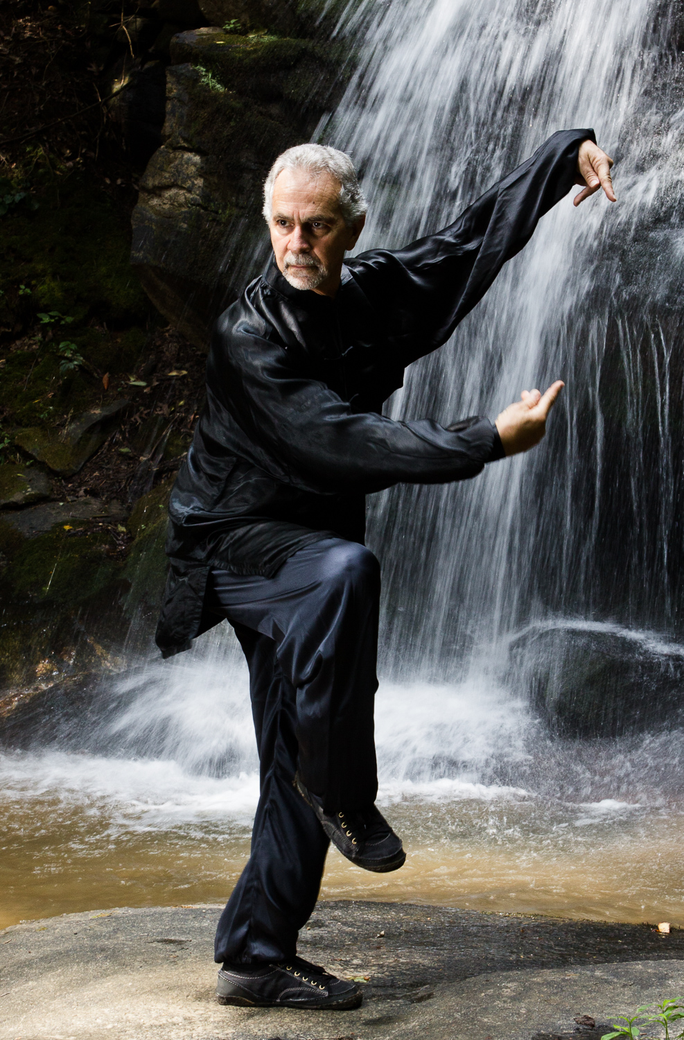 Sifu Paolillo in Praying Mantis posture, 2012