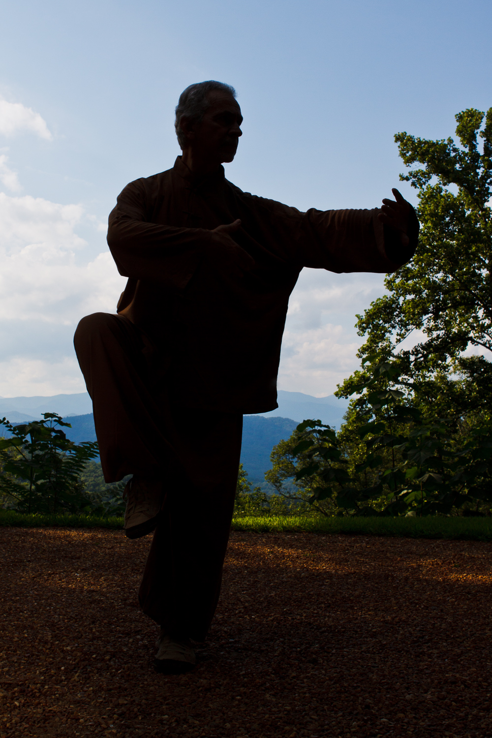 Sifu Paolillo in Bagua posture at Tao Mountain Sanctuary, 2012