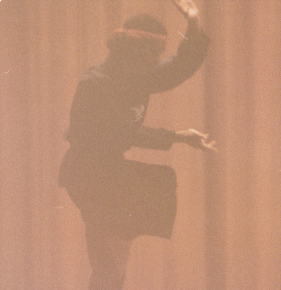 "Master Paolillo debuts Tao Style with a form called ""Dance of the Animals"" at the John Hancock Hall in 1976.  Boston, MA."