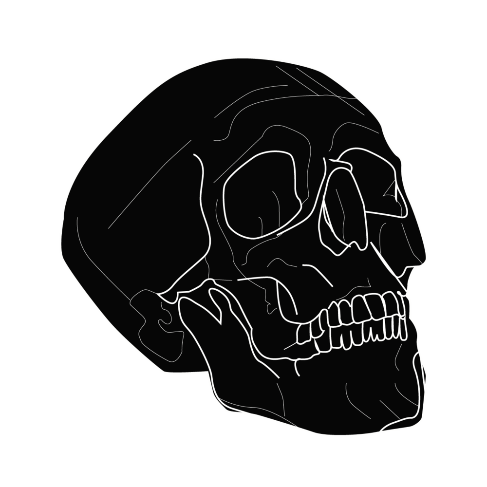 Pirate Skull Tee-01.png