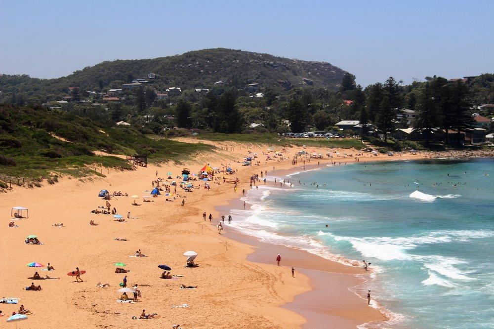 Avalon beach mid summer.jpg