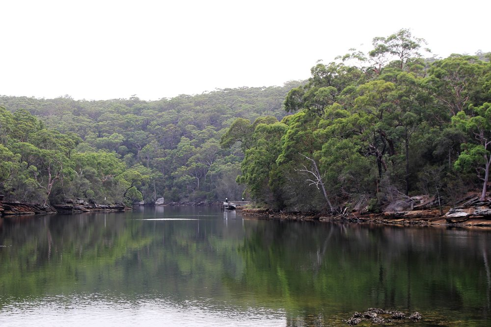 Enchanting reflection of gum trees at Audley Weir