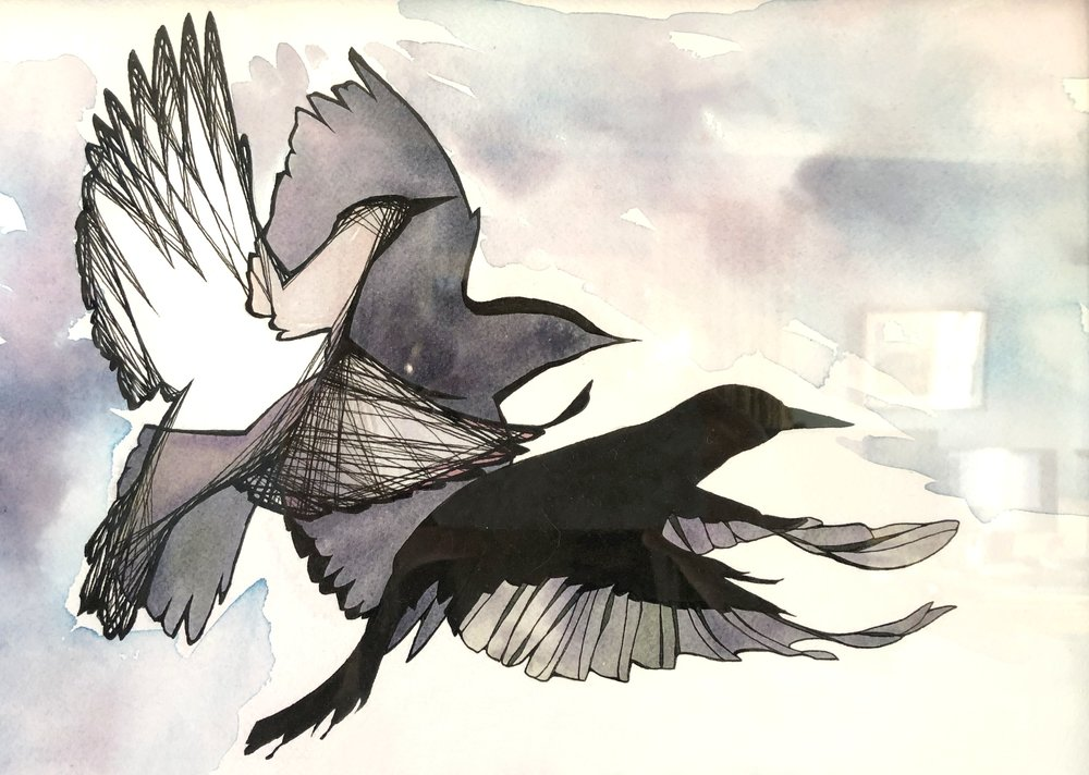 Birds . Ink and watercolor on paper.