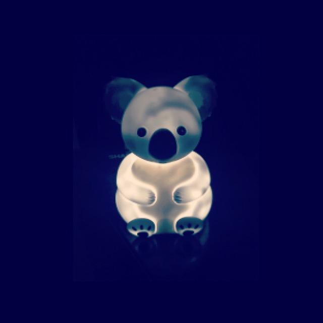 koalalight