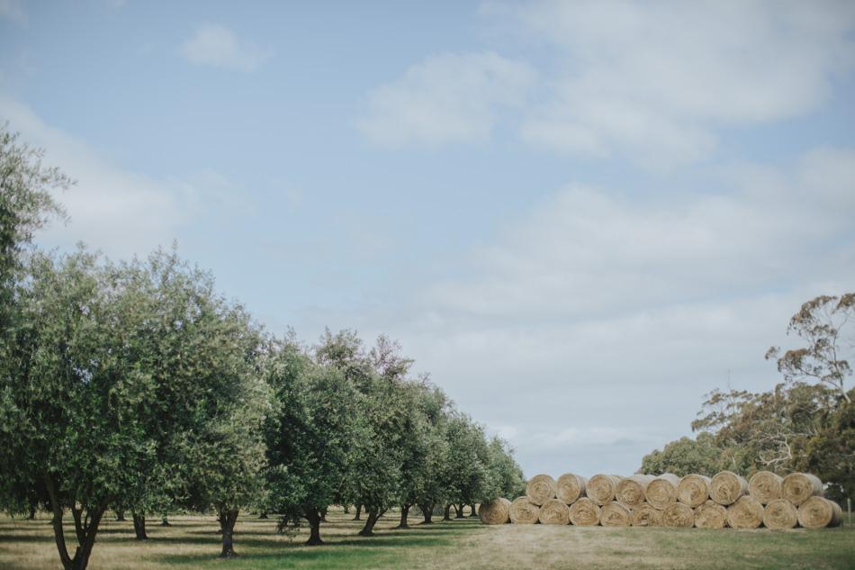 Freshwater_Creek_Cottages_Australian-rustic-farm-Wedding-21.jpg