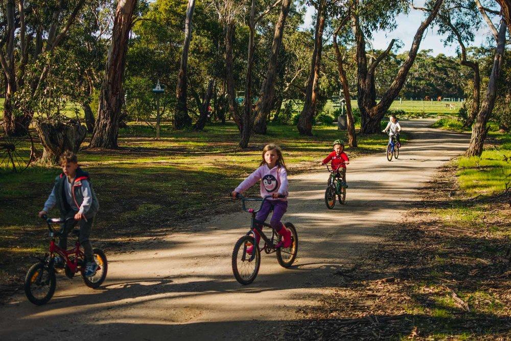 Freshwater Creek Cottages - Kids Farm Tours - Kids Parties - Surf Coast - Torquay - Geelong-43.jpg