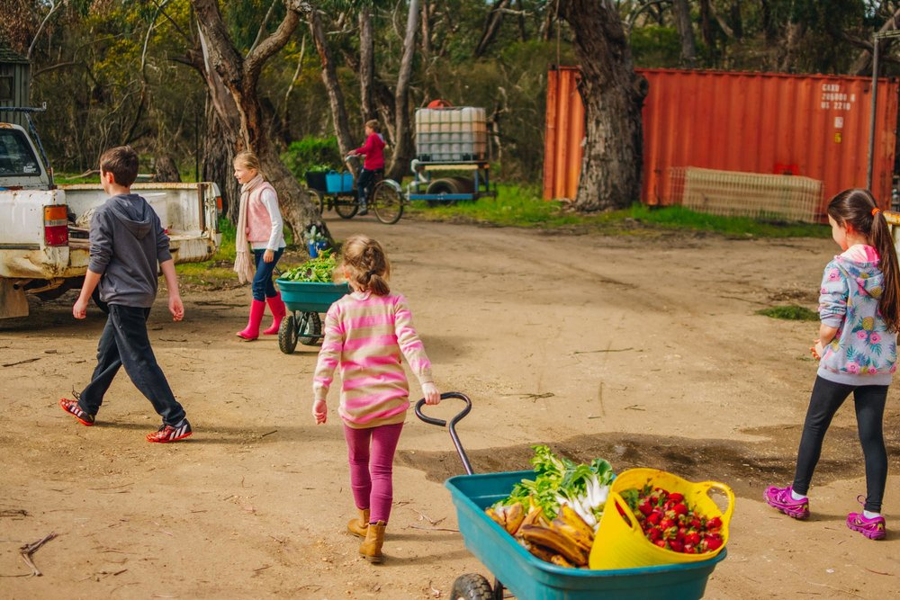 Freshwater Creek Cottages - Kids Farm Tours - Kids Parties - Surf Coast - Torquay - Geelong-120.jpg
