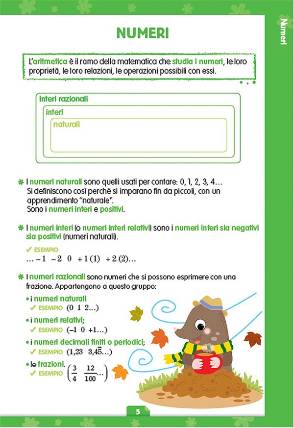 regolario mate (3).jpg