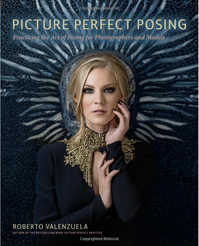 Picture-Perfect-Posing-Book-cover-828x1024.png