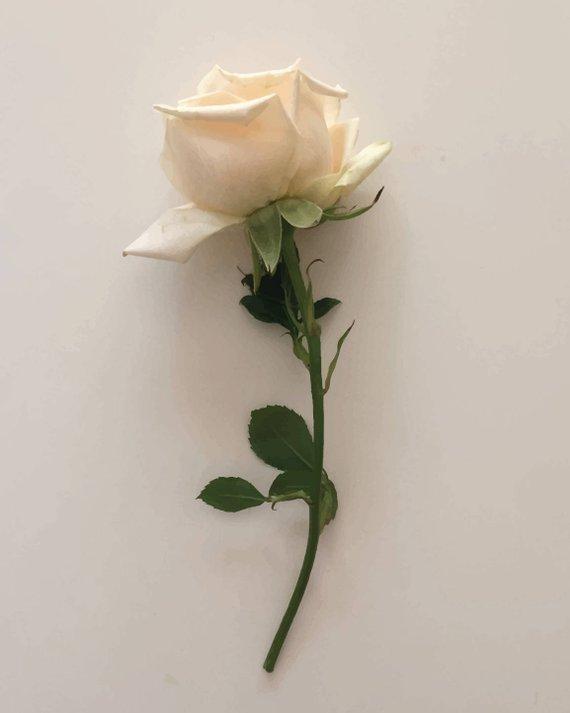 Rose, $7  —OjuDesign, Etsy