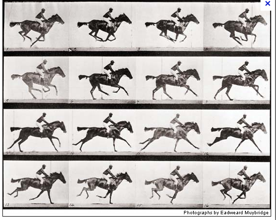Muybridge Screen shot 2012-08-25 at 9.32.05 AM.png