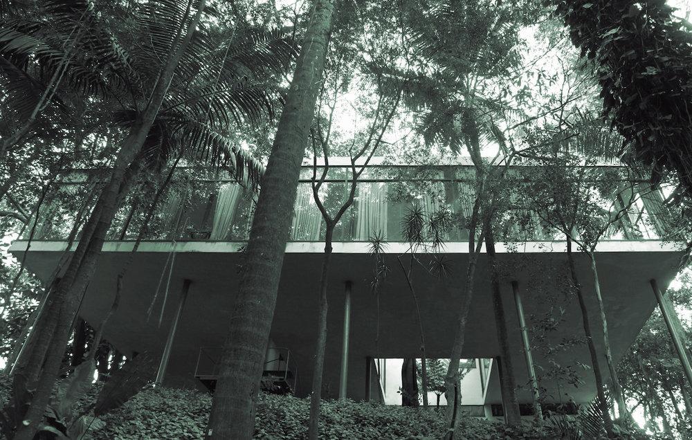 Veronika Kellndorfer, Tree House (Casa de Vidro) , 2014, silkscreen on glass, 59 x 93 inches, 150 x 236 cm, edition of 5