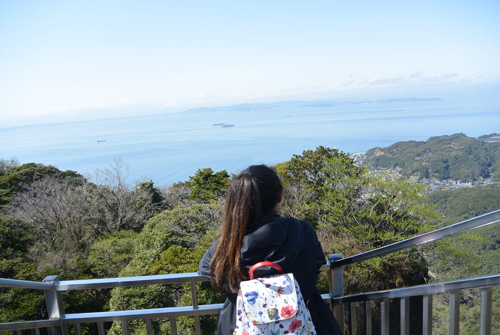 Day 5: Tokyo Disney Sea or Mt. Nokogiri