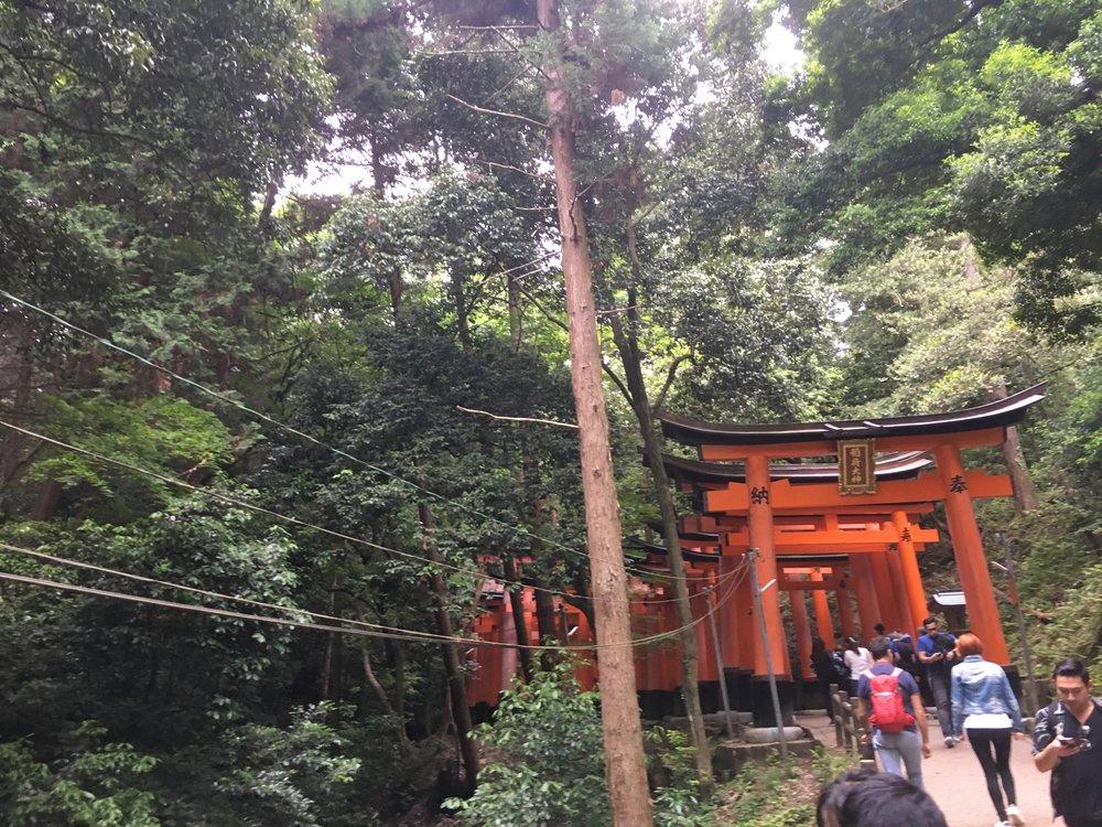 Day 8: Fushimi Inari Shrine