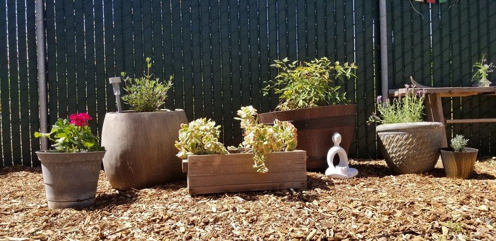 Inner Path Meditation garden.jpg