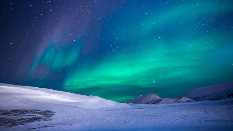 Antarctic.jpeg