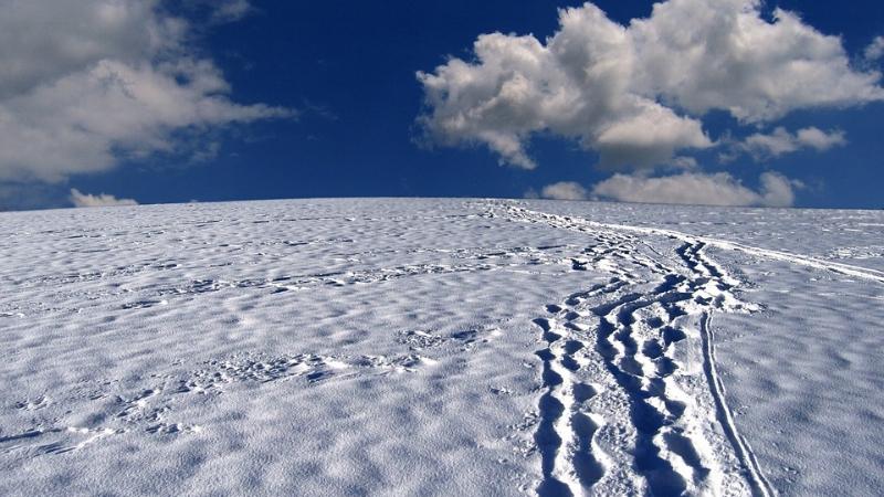 snowfootprints.jpg