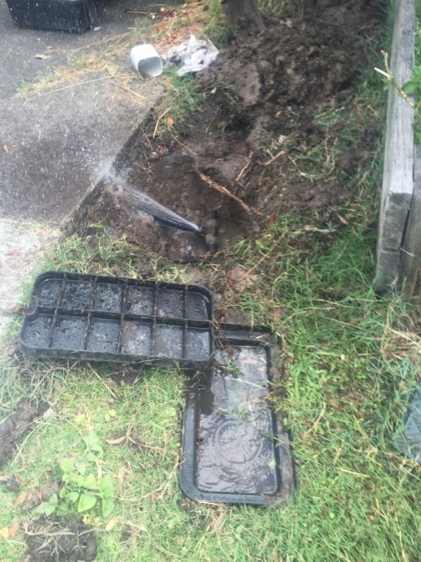 water leak2.jpg