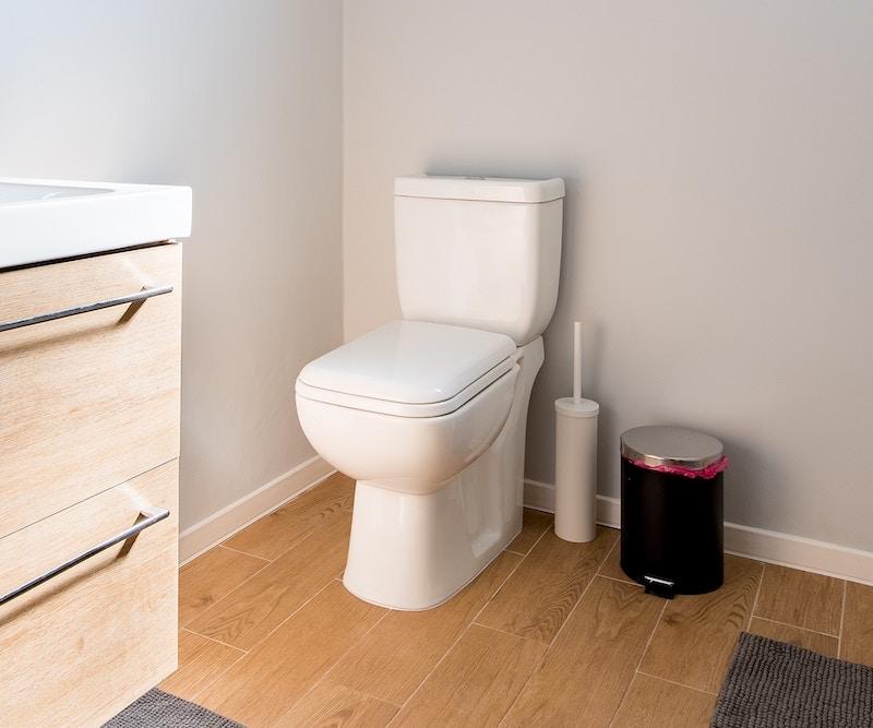 Bathroom Toilet.jpg