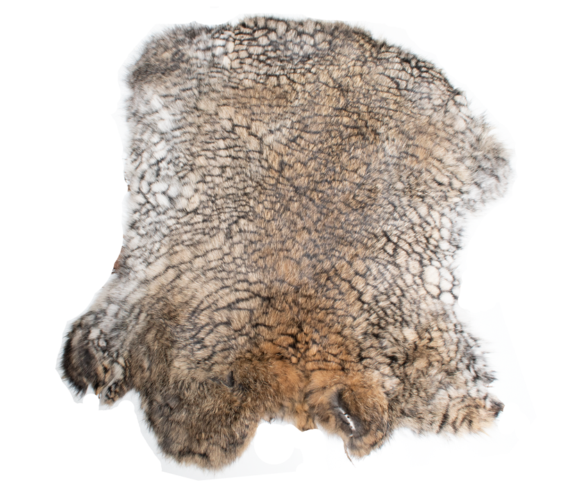 rabbit-skin-6.png