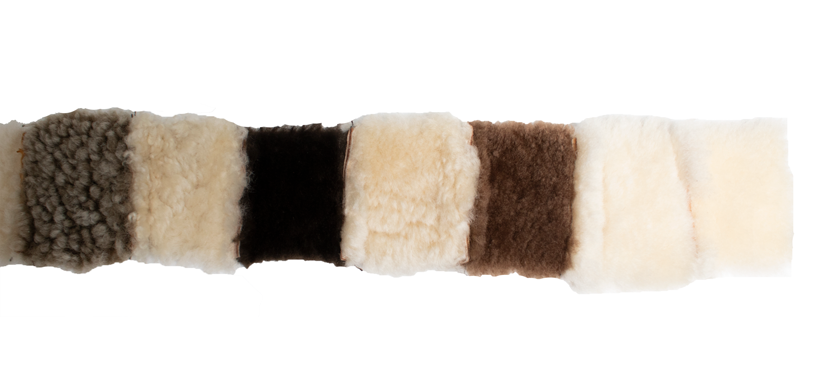 shearling-colors.png