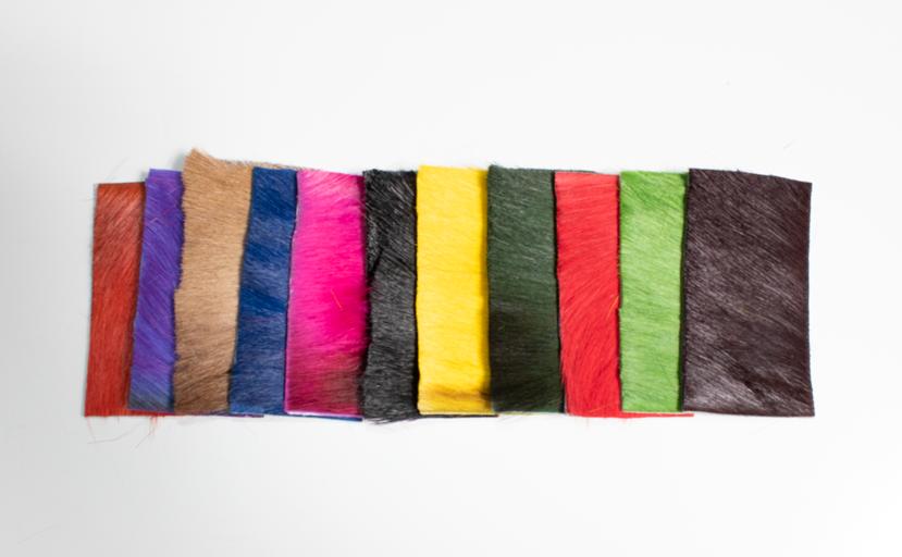 springbok-colors.png