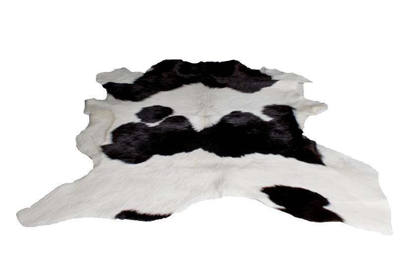 hair-on-calf-6.png