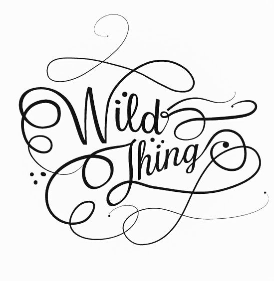 Wild Thing Escapes