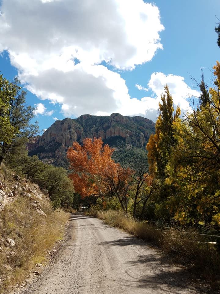 Cave Creek Canyon - Portal aZ